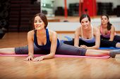 stock photo of do splits  - Group of women working on their flexibility and doing some leg splits in a gym - JPG