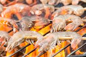 picture of barbie  - Delicious grilled prawns on burning coals - JPG