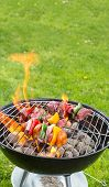 pic of kababs  - Meat and vegetable skewer on barbecue grill with fire - JPG
