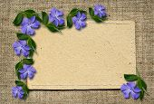 Paper Card And Periwinkle Flowers