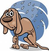 Homeless Dog Cartoon Illustration