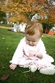 Baby girl engrossed with the grass in the park