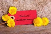 Red Tag With Herzlich Willkommen