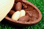 Easter theme: Easter eggs hunt detail