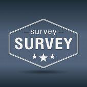 Survey Hexagonal White Vintage Retro Style Label
