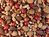 stock photo of walnut-tree  - Nuts background with a mixed assortment of seeds and pecan with walnut brazil nut peanuthazelnut pistachio almond and cashew as a healthy food symbol and nutritious source of protien and lifestyle icon - JPG