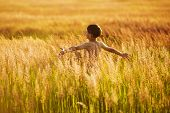 picture of beatitudes  - Happy boy running in the tall grass on a summer evening - JPG