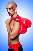 picture of hematoma  - Badly beaten boxer isolated on white - JPG