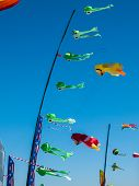 Colorful Kites Flying In Cloudless Blue Sky