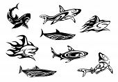 Fierce shark tattoo icons