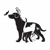 Vector Group Of Pets - Dog, Cat, Bird,butterfly, Rabbit,