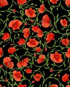poppy flower ornamental seamless background