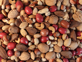 image of pecan tree  - Nuts background with a mixed assortment of seeds and pecan with walnut brazil nut peanuthazelnut pistachio almond and cashew as a healthy food symbol and nutritious source of protien and lifestyle icon - JPG