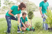stock photo of moral  - Young woman gardening for the community on a sunny day - JPG