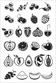 picture of papaya fruit  - fruits and berry black and white icons - JPG