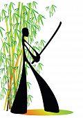 Shadow Man Samurai Bamboo