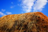 picture of haystack  - haystack and blue sky countryside autumn season - JPG