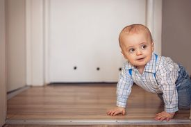 pic of crawl  - Portrait of a adorable baby boy crawling on the floor at home