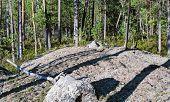 Sun Rays Illuminate Grey Rock