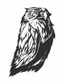 picture of monochromatic  - Owl sign - JPG