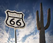 Route 66 road sign with Saguaro Cactus and wild dramatic sky