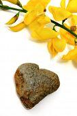 pedra do coração