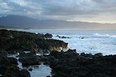 Hawaiin Cove