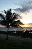 North Shore Sunset