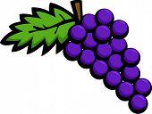 Постер, плакат: Плоды винограда