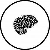 brain symbol