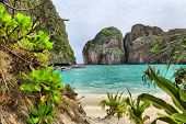 picture of phi phi  - Maya bay of Phi - JPG