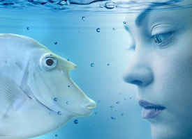 stock photo of undine  - woman and fish - JPG