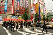 Zebra Crossing in the Electrical Town of Akihabara, Tokyo