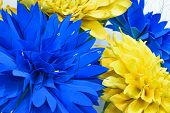 Large Giant Paper Flowers. Big Blue And Yellow Dahlias Made From Paper. Pastel Paper Background Patt poster