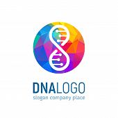 The Logo Of The Dna In Circle With A Polygonal Texture. Isolated Deoxyribonucleic Acid Colorful Logo poster