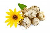 image of jerusalem artichokes  - Five tubers of Jerusalem artichoke with a yellow flower isolated on white background - JPG