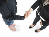 Two business woman Handshaking Handshake