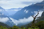 Scenic overlook of Doubtful Sound in New Zealand