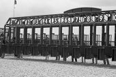 Race track starting gates in black and white...getting ready for the horses to enter