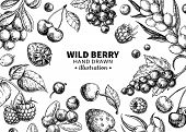 Wild Berry Drawing. Hand Drawn Vintage Vector Frame. Summer Fruit Set poster
