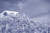 Hillside home in Tucson, Arizona