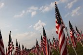 Field of Heroes flags in Westerville, Ohio
