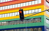 Stoplight In The Street And Crow