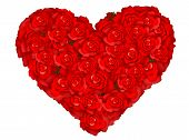 Heart Of Roses