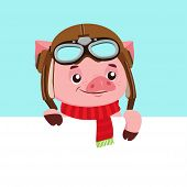 Funny Cartoon Pig Vector Character. Portrait Of Piggy With Helmet. Cute Animal. Vector Illustration. poster