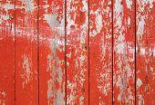 Pintura roja descamativa en una valla de madera.