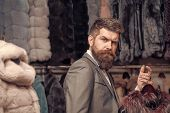 Bearded Man Among Fur, Luxury, Moneybags, Business. Shopping, Seller, Customer. Valentines Day, Man  poster