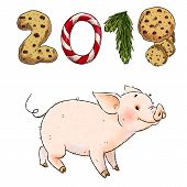 Hand Drawn Naughty Pig. New Year 2019 Chinese Zodiac Symbol. Cute Funny Piglet Isolated On White Bac poster
