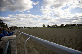 stock photo of race track  - Home stretch at Keenland race track - JPG
