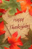 image of happy thanksgiving  - fall background with green and oranges leaves covering twin rope paper saying Happy Thanksgiving - JPG